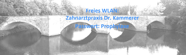 Wendlingen_Brücke3_WLAN