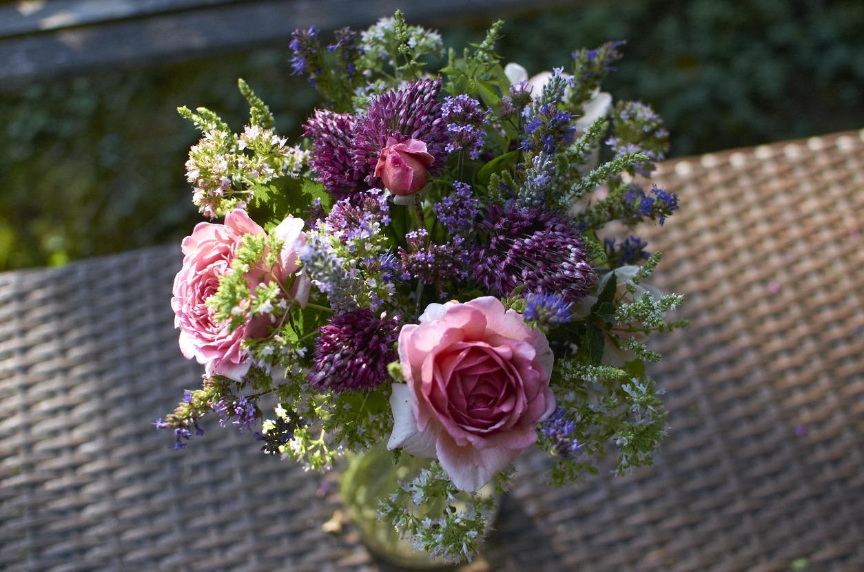 Anglická růže Princess Alexandra of Kent, letní okrasné česneky, sporýš argentinský, šanta, máta, dobromysl.