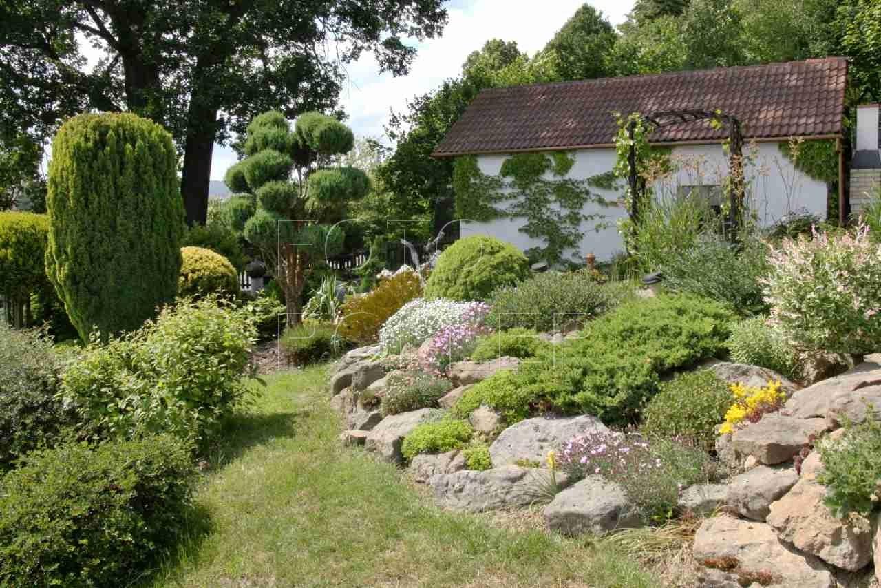 Skalky, tvarované dřeviny a mnohem víc ukrývá tato zahrada nad Děčínem