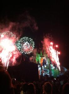 Mickeys Not So Scary Fire Works _ Zainey Laney