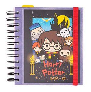 Erik Diario Scuola Giornaliero 20202021 11 Mesi 14x16 Cm Harry Potter Special Edition 0