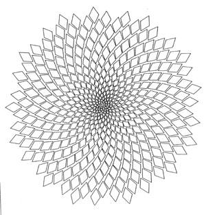 https://i1.wp.com/www.zakairan.com/ProductsGeoJewelry/Images/SunFlower-SpiralSeedTorus-300.jpg