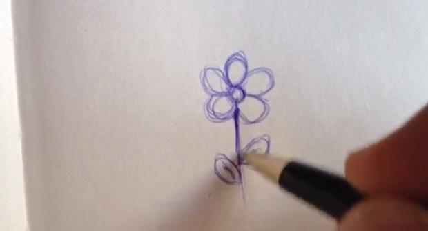 learn to draw with zakiworld