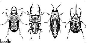 beetlefinal1