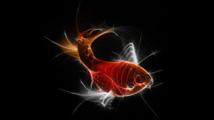 sean-freeman-thereis-fish-1