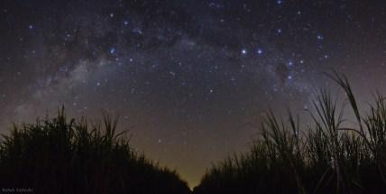 starrynight-of-brazil_tafreshi
