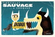 chocolat sauvage a croquer