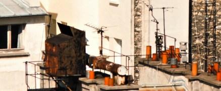 2010-03-14_truc brulé paris