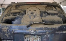 dirty-car-art