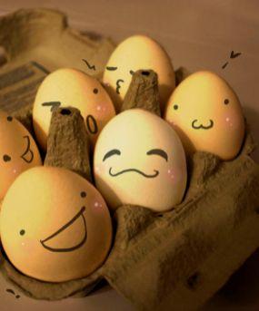 the_secret_life_of_eggs_47