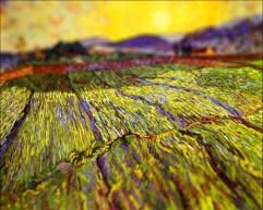 tilt-shift-van-gogh-flou-paysage-peinture-perspective-04