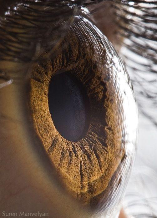 your_beautiful_eyes_01