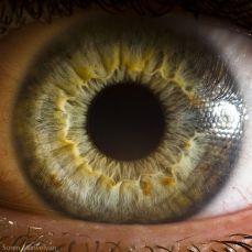 your_beautiful_eyes_04