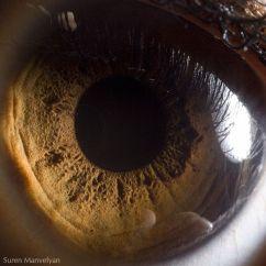 your_beautiful_eyes_08