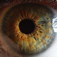 your_beautiful_eyes_16