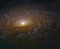 NGC3521_hstGendlerL