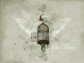 cadeau saint valentin 2011