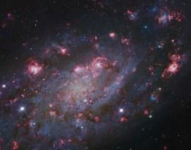 NGC2403-Subaru-HST-L