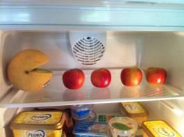 pacman frigo pomme orange