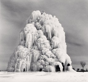 arbre gele