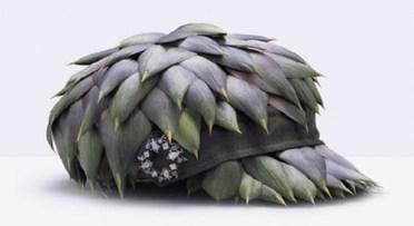 casquette artichaud