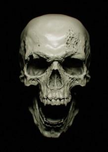 Skull par Kouji_Tajima