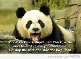 panda racisme