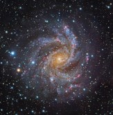 NGC6946-Subaru-GendlerL
