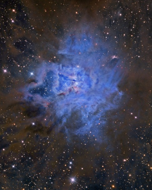 NGC7023hallas
