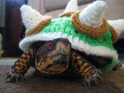 bowser tortue crochets