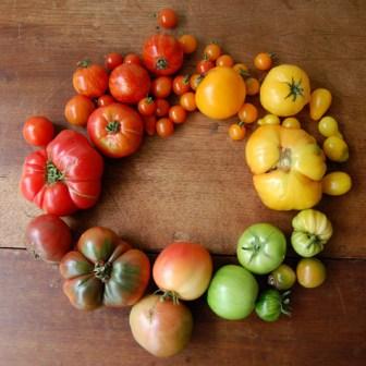 color palette tomates