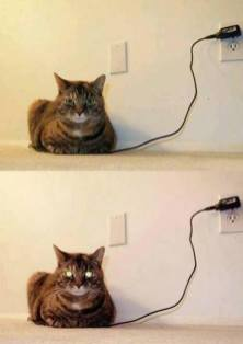 chat charge