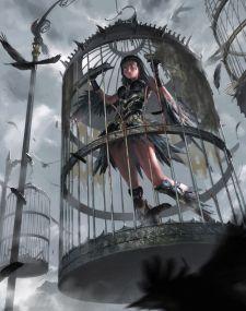 cage sorciere