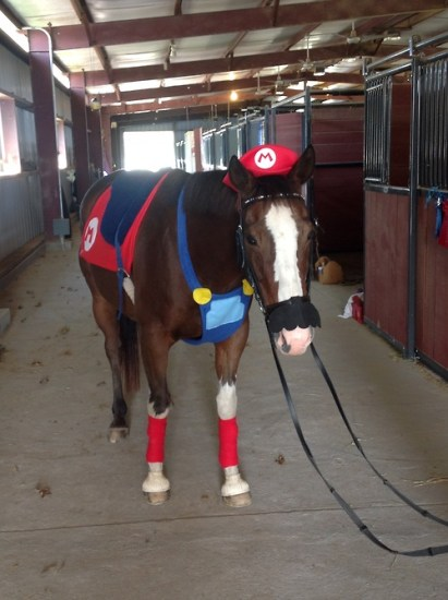 cheval mario