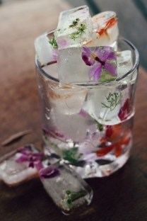 glacons fleurs