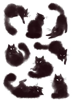 dessin chats