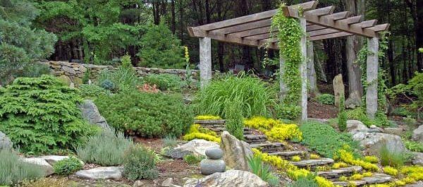 Ideas for a gorgeous grassless garden - Zameen Blog on Grassless Garden Ideas  id=40451