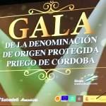 GALA PRIEGO DE CÓRDOBA 2019, EL AOVE MÁS PREMIADO