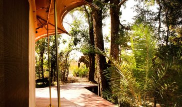 Ila Safari Lodge - Tent view