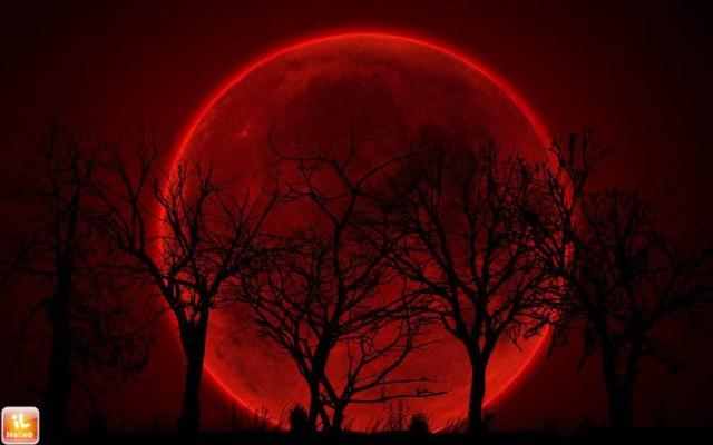 Superluna e luna di sangue: tutti con il naso all'insù il 28 settembre e al 27 ottobre