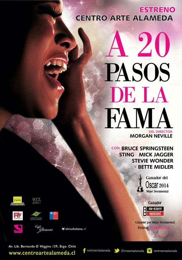 A-20-Pasos-afiche