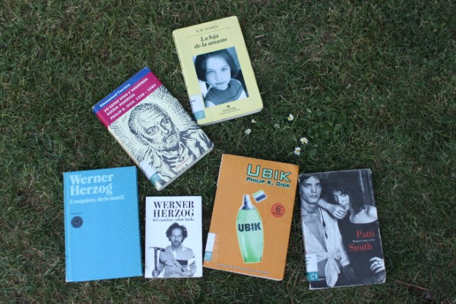 De Herzog a la literatura