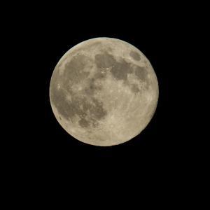 Hou je vast, volle maan! Foto Nasa