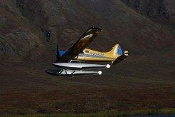 4BEAVER-DHC-2-MK.1,-N4040W