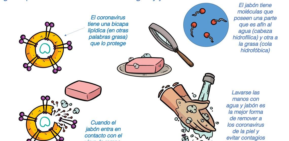 El jabón y agua una gran arma contra el coronavirus