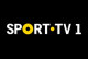 'Chaves – Porto': SportTV transmite jogo em direto