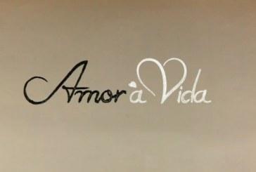 """""""Amor à Vida"""" mantém liderança, mas com RTP1 'à perna'"""