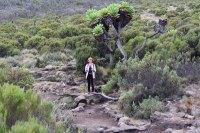 Mount Kilimanjaro Marangu3 route Tanzania Zara Tours 2 1