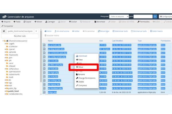 clique na pasta wordpress para extrair os arquivos 2
