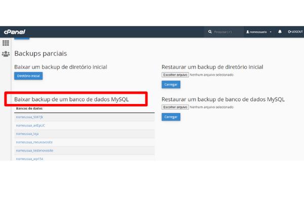 Como Fazer Backup de Banco de Dados Mysql pelo Cpanel-2